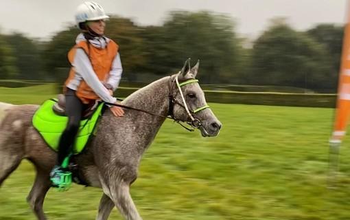 Equitazione: In Olanda per Alessia Lustrissy un bronzo che brilla cone l'oro