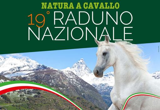 Equitazione: Oltre 120 cavalieri per il raduno nazionale di natura a cavallo a Torgnon nel week end