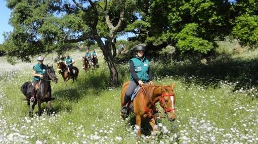 Equitazione: All'Avres di Nus corso di di Guida di Equitazione di Campagna