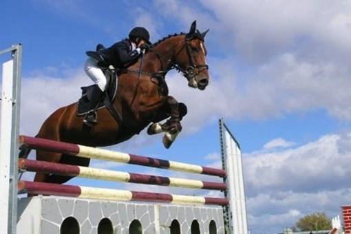 Equitazione: Brillano i binomi del Circolo Ippico San Maurizio